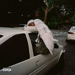 BLOOD ORANGE - Negro Swan